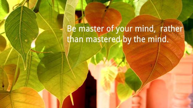 Be Master9